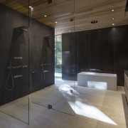 A pair of pivoting glass panels separates the
