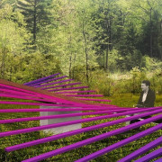 """""""Making waves"""": In physics, the kinetic energy of botanical garden, botany, flower, forest, garden, green, groundcover, landscape, lavender, leaf, natural landscape, nature, plant, purple, shrub, spring, tree, vegetation, violet, woodland, brown"""