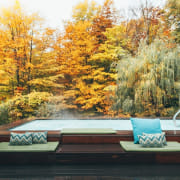 The enormous 1500 sq. ft. terrace features clean autumn, furniture, home, house, landscape, leaf, natural landscape, nature, plant, sky, table, tree, woody plant, orange