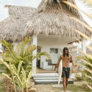 Swell - a surf and lifestyle hotel - arecales, attalea speciosa, building, cottage, house, hut, palm tree, plant, resort, thatching, tree, tropics, vacation, white, brown