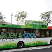 Singapore green-roofed bus initiative - bus | car bus, car, double-decker bus, mode of transport, motor vehicle, public transport, tour bus service, transport, vehicle, white