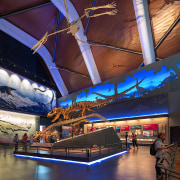 Night at the museum – vivid exhibits and