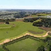 Proposed plantings for the expansive project. Rendering: Boffa