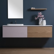 Part of the upmarket, green-at-heart Michel Cesar collection, bathroom, bathroom accessory, bathroom cabinet, bathroom sink, chest of drawers, furniture, product, shelf, sideboard, sink, tap, black