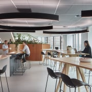 For Suncorp New Zealand office fit-out, extensive greenery ceiling, conference hall, interior design, office, gray