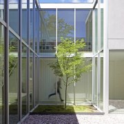 Full height, commercial glazing ensures natural light floods aluminium, architecture, building, daylighting, facade, glass, home, house, interior design, metal, plant, property, real estate, stairs, tree, window, white