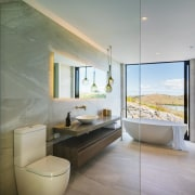 ​​​​​​​Taken from within the glass walled shower enclosure, gray