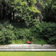 It's an extremely private home botanical garden, flora, garden, grass, green, landscape, lawn, leaf, nature, plant, shrub, tree, vegetation