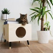 Designed by Krab - The box fits into cat, floor, flowerpot, furniture, interior design, product design, shelf, small to medium sized cats, table, wood, white