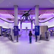 Zaha Hadid – Mathematics: The Winton Gallery – design, function hall, interior design, lighting, purple, structure, purple