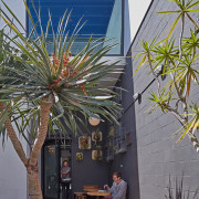 Loqui Tacos' outdoor dining space is at the agave, arecales, home, house, outdoor structure, palm tree, plant, real estate, roof, tree, gray