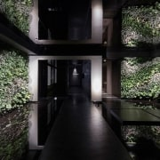 The entrance with plants and stepping stones - architecture, home, house, interior design, plant, property, tree, black