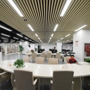 xxx - ceiling | institution | interior design ceiling, institution, interior design, black, white