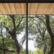 Another view of the wood-lined soffit - Another house, outdoor structure, plant, tree, window, wood, brown, black