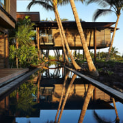 Architect: Olson KundigPhotography by Benjamin Benschneider architecture, arecales, home, house, leisure, palm tree, plant, real estate, reflection, resort, swimming pool, tree, water, black