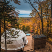 Dome 1 - autumn | cottage | home autumn, cottage, home, landscape, leaf, nature, plant, property, real estate, state park, tree, wilderness, wood, brown