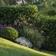 Garden Project By Landart Landscapes. Photography: Jason Busch botanical garden, garden, grass, grass family, groundcover, hedge, landscape, landscaping, lawn, plant, shrub, vegetation, walkway, yard, brown, green