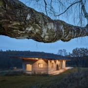 Overarching wood – the slender roof is constructed