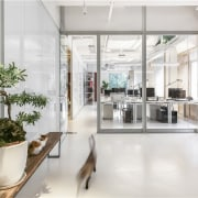 The use of white means the design studio flooring, interior design, lobby, white