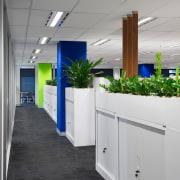Office plants sit atop storage cupboards interior design, office, gray