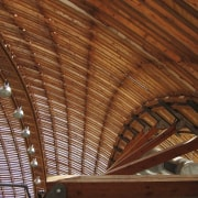 Forestry Branch – Marche-en-Famenne attic, beam, ceiling, daylighting, roof, wood, wood stain, brown