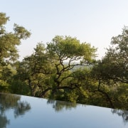 The infinity pool falls off the edge bank, bayou, biome, branch, lake, leaf, nature, nature reserve, plant, pond, reflection, riparian forest, riparian zone, river, sky, tree, vegetation, water, waterway, wetland, brown, white