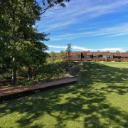 Shaded areas provide reprieve from the sun on area, cottage, estate, grass, home, house, land lot, landscape, lawn, property, real estate, sky, tree, yard, brown