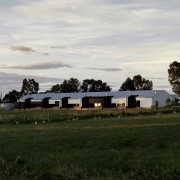 Six Degrees Architects designed the property to hide cloud, farm, field, grass, grassland, house, land lot, landscape, pasture, plain, plant, prairie, rural area, sky, tree, brown, white