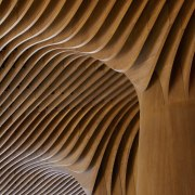 It's an incredibly ornate ceiling architecture, ceiling, column, daylighting, light, line, structure, symmetry, wood, brown