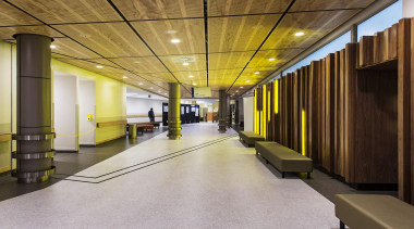 EXCELLENCE AWARDThe Clinical Services Building Middlemore Hospital (2 architecture, ceiling, interior design, lobby, brown, gray