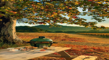 View the Big Green Egg RangeLimited availability autumn, branch, deciduous, grass, landscape, leaf, nature, plant, rural area, sunlight, tree, brown