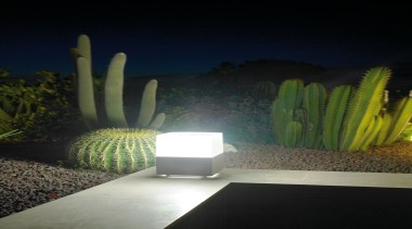 Exterior and Outdoor Lights - Exterior and Outdoor cactus, flowerpot, lighting, majorelle blue, plant, black