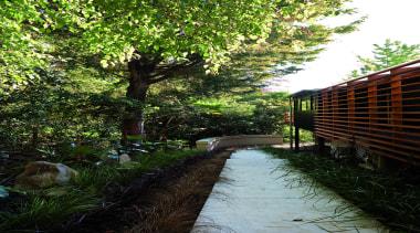 Remuera, Auckland - Glade House - garden | garden, grass, landscape, leaf, outdoor structure, path, plant, tree, walkway, yard