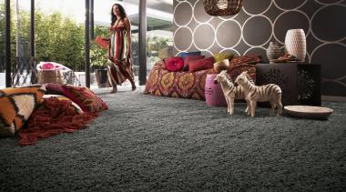 Grey carpet and interior design inspiration. - Living carpet, floor, flooring, home, house, mammal, room, vertebrate, black