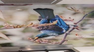 20141218094746.jpg - 20141218094746.jpg - beak | bird | beak, bird, gray