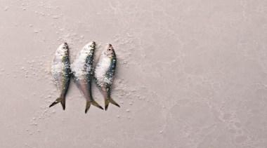 5110  alpine mist fish.jpg - 5110__alpine_mist_fish.jpg - gray