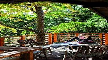 Remuera, Auckland - Glade House - backyard | backyard, green, home, house, leaf, leisure, outdoor structure, plant, table, tree, black