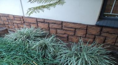 Decocrete 16 - Decocrete_16 - grass   grass grass, grass family, plant, tree, yard, black