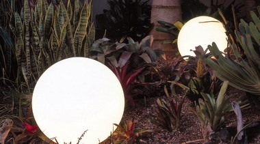 Two balls of light glowing in tropical garden arecales, flora, leaf, lighting, plant, tree, black