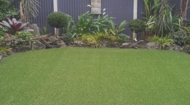 Tigerturf Header Hero arecales, backyard, garden, grass, grass family, landscape, landscaping, lawn, palm tree, plant, vegetation, walkway, yard, green