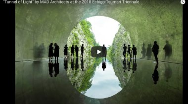 Tunnel Of Light Video - biome | computer biome, computer wallpaper, green, nature, organism, reflection, symmetry, text, tree, water, world, green