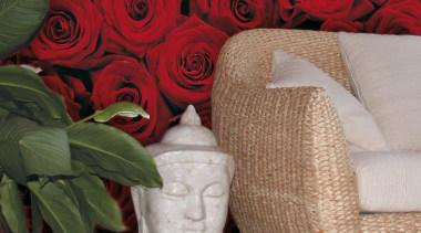 Roses Interieur - Italian Color Range - couch couch, cut flowers, floral design, floristry, flower, flower arranging, flowerpot, furniture, garden roses, interior design, petal, plant, rose, rose family, rose order, table, red