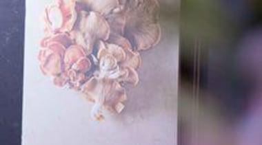 At Mantell's - At Mantell's - petal | petal, gray, purple