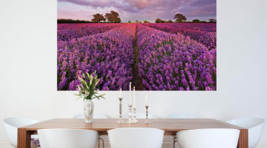 Lavendel Interieur - Italian Color Range - flower flower, interior design, plant, purple, violet, wall, white