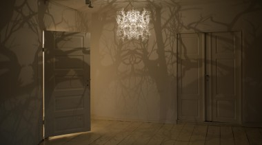 Inspired by the illustrations of German biologist, naturalist darkness, light, lighting, sunlight, texture, wall, window, brown
