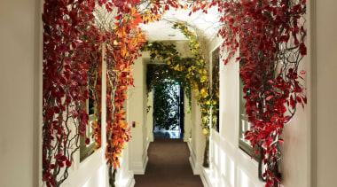 Velluto - decor | flower | interior design decor, flower, interior design, brown, white