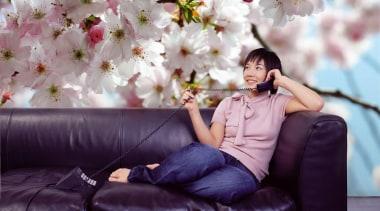 Spring Interieur - Italian Color Range - blossom blossom, cherry blossom, flower, girl, petal, pink, plant, purple, spring, purple, gray