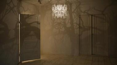 hildendiazformsinnature copy.jpg - hildendiazformsinnature_copy.jpg - darkness | light darkness, light, lighting, wall, brown