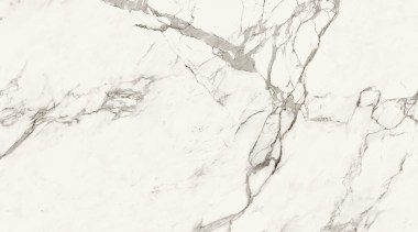 AURA Tabla black and white, branch, drawing, monochrome, monochrome photography, sketch, texture, tree, white