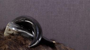 Modern Style Range - beak | bird | beak, bird, feather, tail, water bird, black, gray